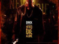 Image for DMX