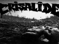 Image for CRISALIDE