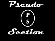 PSEUDO SECTION