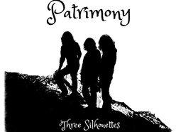 Image for Patrimony