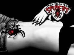 Image for Narcoleptic Spiders