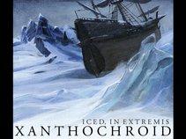 Xanthochroid
