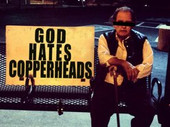 Image for Copperheads