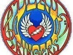 Image for Dead Ringers