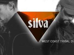 Image for Silva