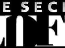 The Secret Loft