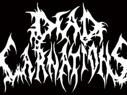 Image for DEAD CARNATIONS