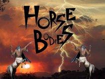 Horse Bodies