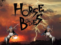Image for HORSE BODIES
