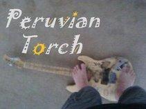 Peruvian Torch