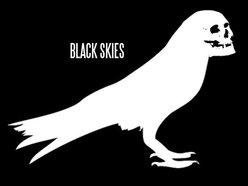 Image for Black Skies