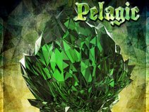 Pelagic