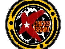 Chicks Brain