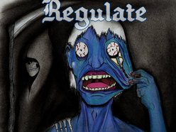 Image for Regulate