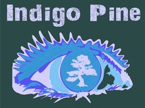 Indigo Pine