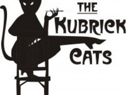 Image for The Kubrick Cats