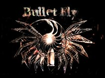Bullet Fly