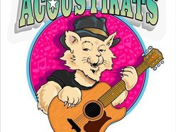 Image for The Acoustikats