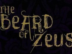 Image for The Beard of Zeus!