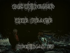 Image for Disturbing The Peace