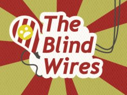 Image for The Blind Wires