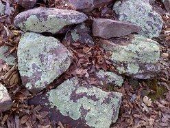 Stonefort Seekers