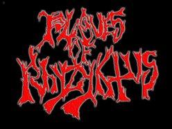 Plagues Of Rhyzyktus