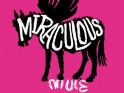 Image for Miraculous Mule
