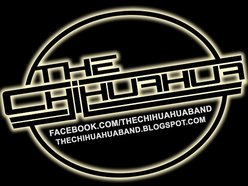Image for The Chihuahua Band