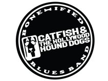Catfish & The Hollywood Hound Dogs