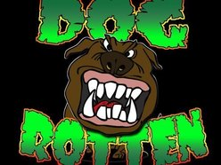 Image for Dog Rotten