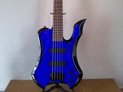 C.S.G.Guitars