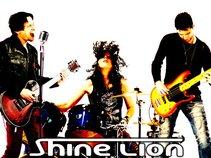 Shine Lion