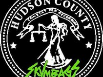 Hudson County Skvmbags