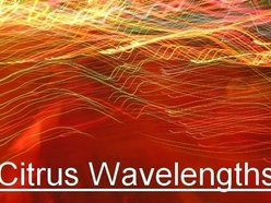 Image for Citrus Wavelengths
