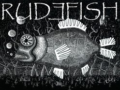 Image for RUDƎFISH