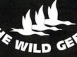 Image for The Wild Geese
