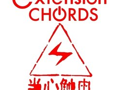 Image for Extension Chords