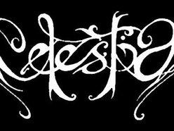 Image for Celestia