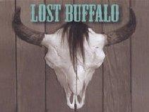 Lost Buffalo