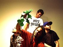 the greenbeets