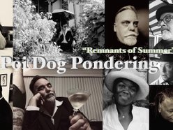 Image for Poi dog Pondering