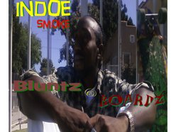 Indoe2011