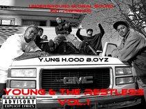 Yung Hood Boyz/Alley Boy Affiliates