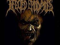 Infected Epididymides