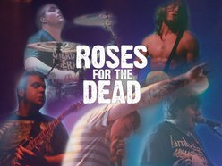 Image for Roses For The Dead