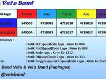 Vei's Band