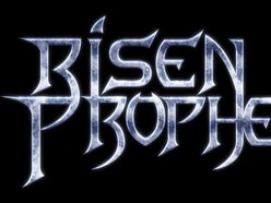 Image for Risen Prophecy