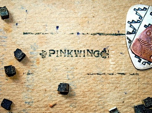Image for pinkwing