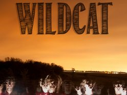 Image for Wildcat